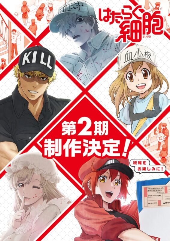 Hataraku Saibou 2nd Season [1/??] [Sub esp] [MEGA 1 link]